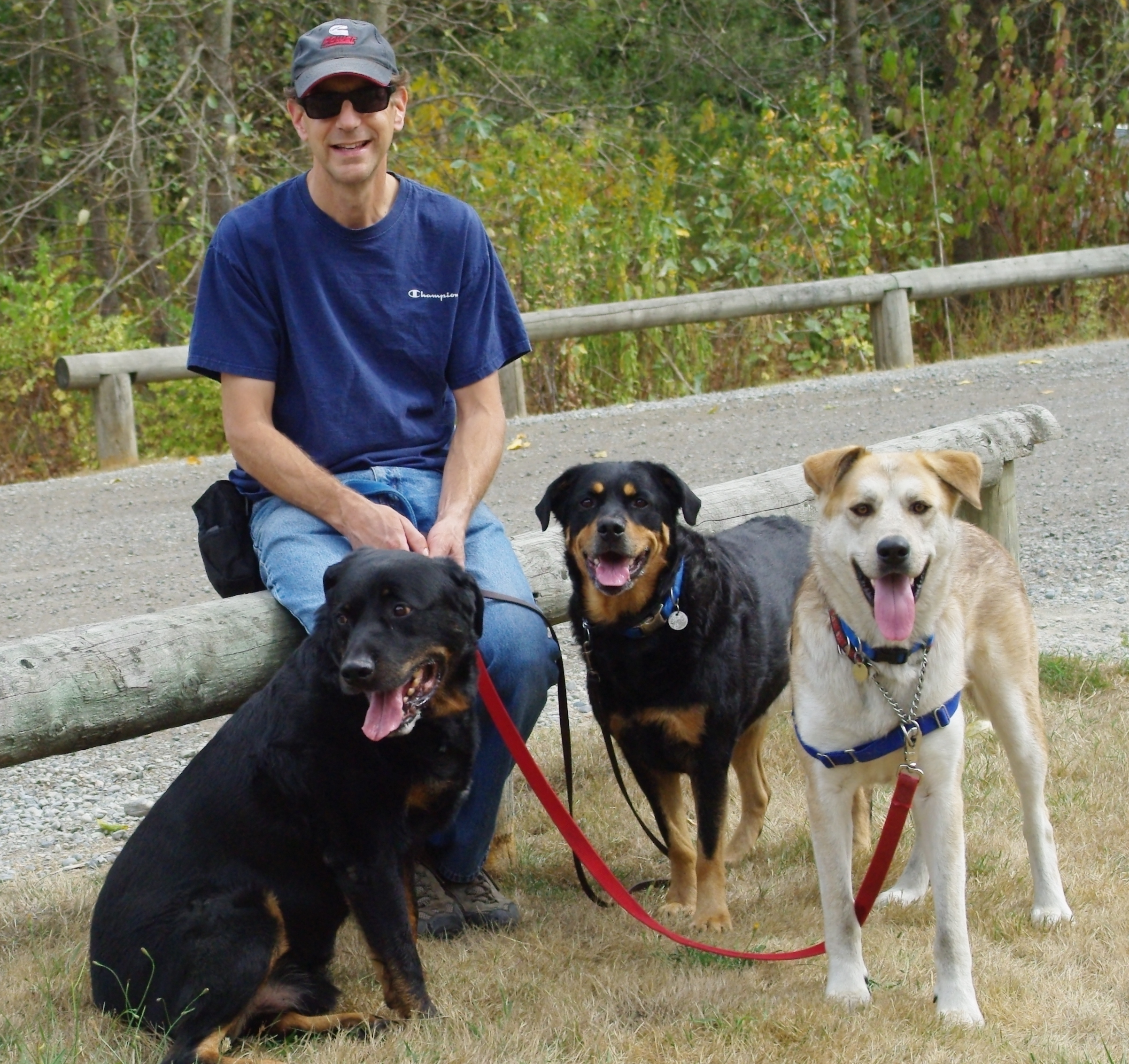 Trainer Andy with his three dogs